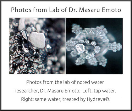 dr emoto water crystal photos